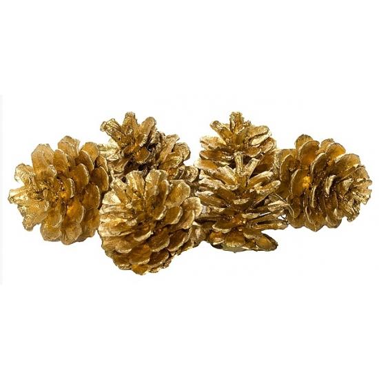 Gouden kerstversiering dennenappels